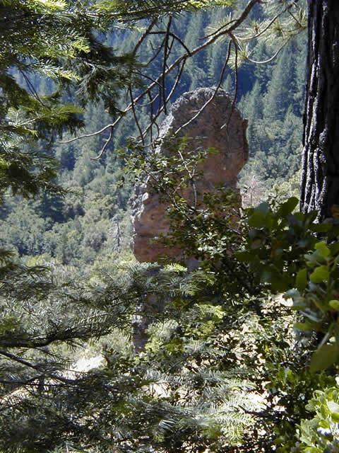 Devil's Thumb as seen from the trail