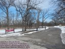 Palos Park Woods-North, Grove #1 : Start / Finish Area : Saturday March 15
