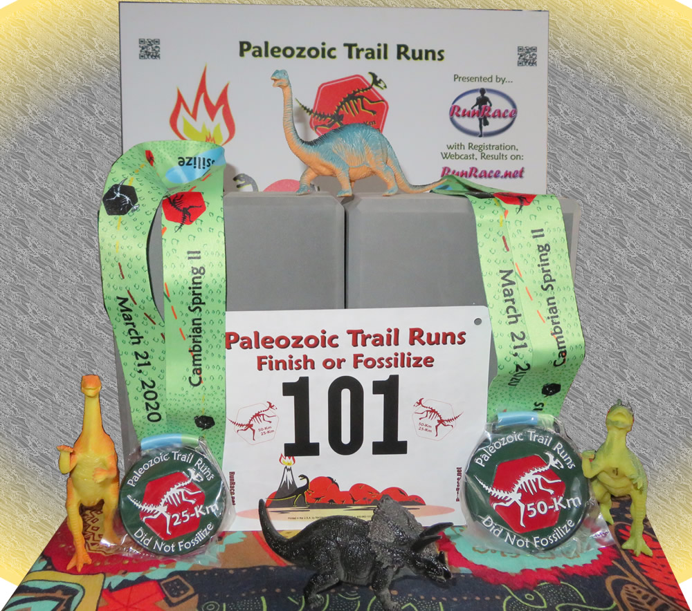 [Image: Paleozoic Trail Runs Sidelined Runners Challenge]