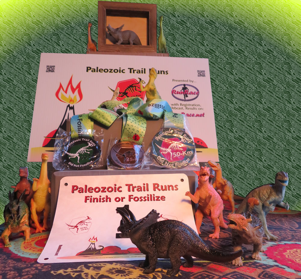 [Image: Paleozoic Trail Runs Sidelined Runners Challenge Results]